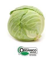 Repolho Verde Orgânico 500g