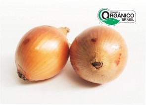 Cebola Orgânica 500g